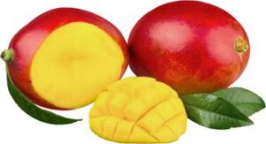mangue-africaine