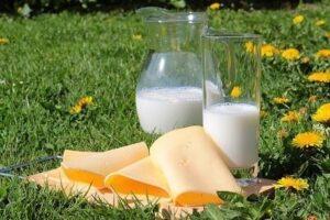 calcium-produits-laitiers